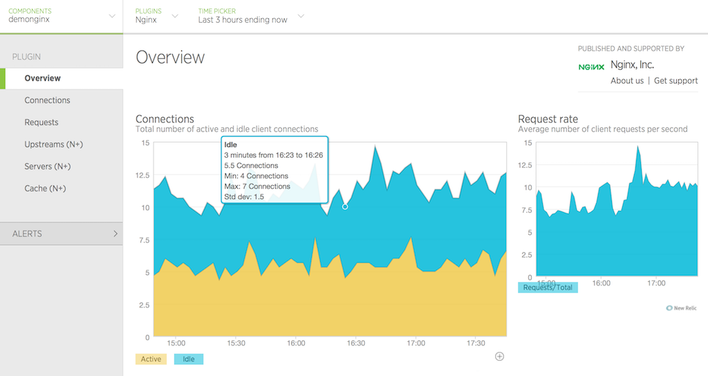 image of Overview tab in New Relic UI