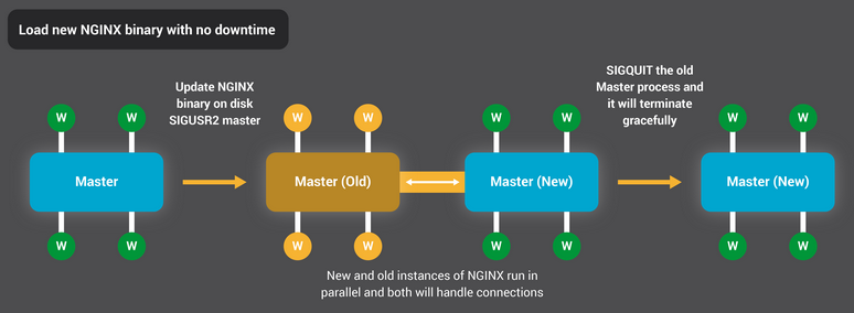 NGINX reloads its binary without any downtime (interruption of request processing).