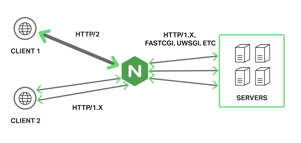 NGINX acts a 'gateway' between clients that use HTTP/2 and upstream servers, with which it uses HTTP/1.x, FastCGI, or other unsecured protocols