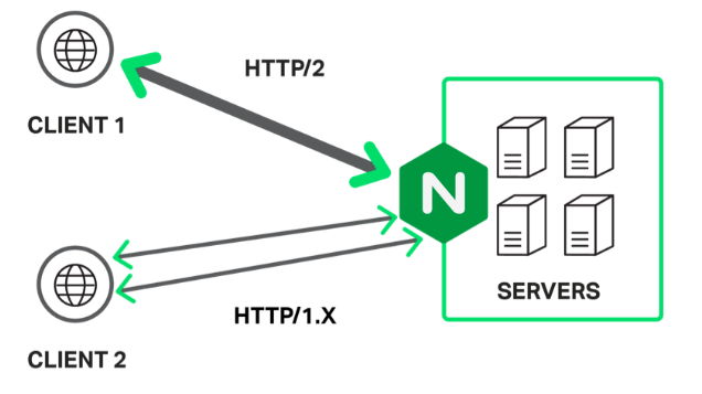 https://www.nginx.com/wp-content/uploads/2015/11/Screen-Shot-2015-11-16-at-11.06.09-PM.png