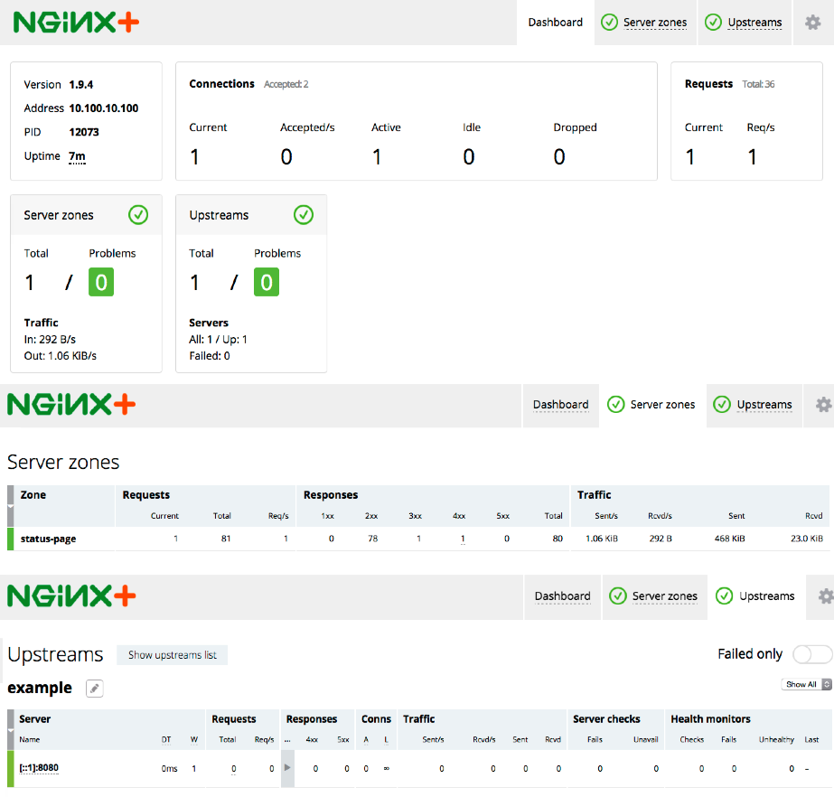 Before configuring backend servers using Chef, the NGINX Plus dashboard shows only the live activity monitoring module itself