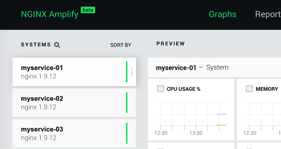 You can assign a human-readable name to a Docker container, to make it easier to identify on the NGINX Amplify dashboard when configuring how to monitor NGINX with Amplify in a Docker deployment