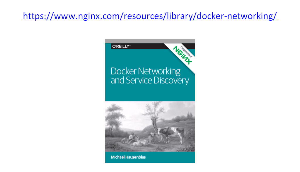 O'Reilly book about Docker networking and Service Discovery