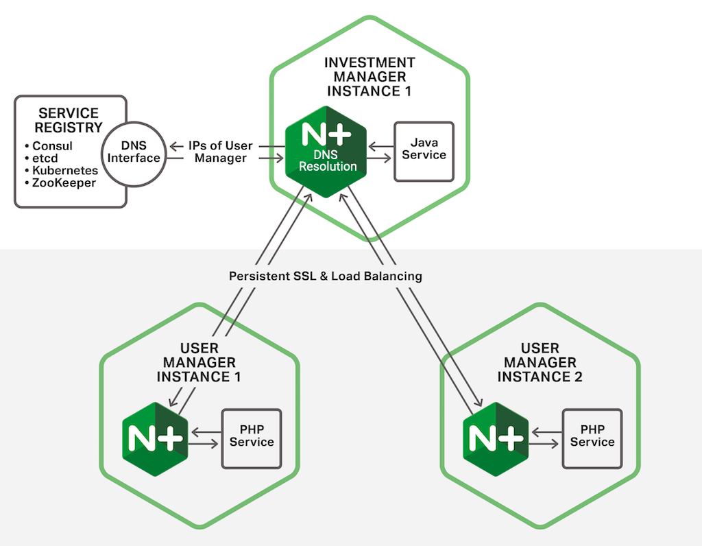 In the Fabric Model of the NGINX Microservices Reference Architecture, an NGINX Plus instance performs service discovery on behalf of its colocated microservice by making DNS requests to a service registry