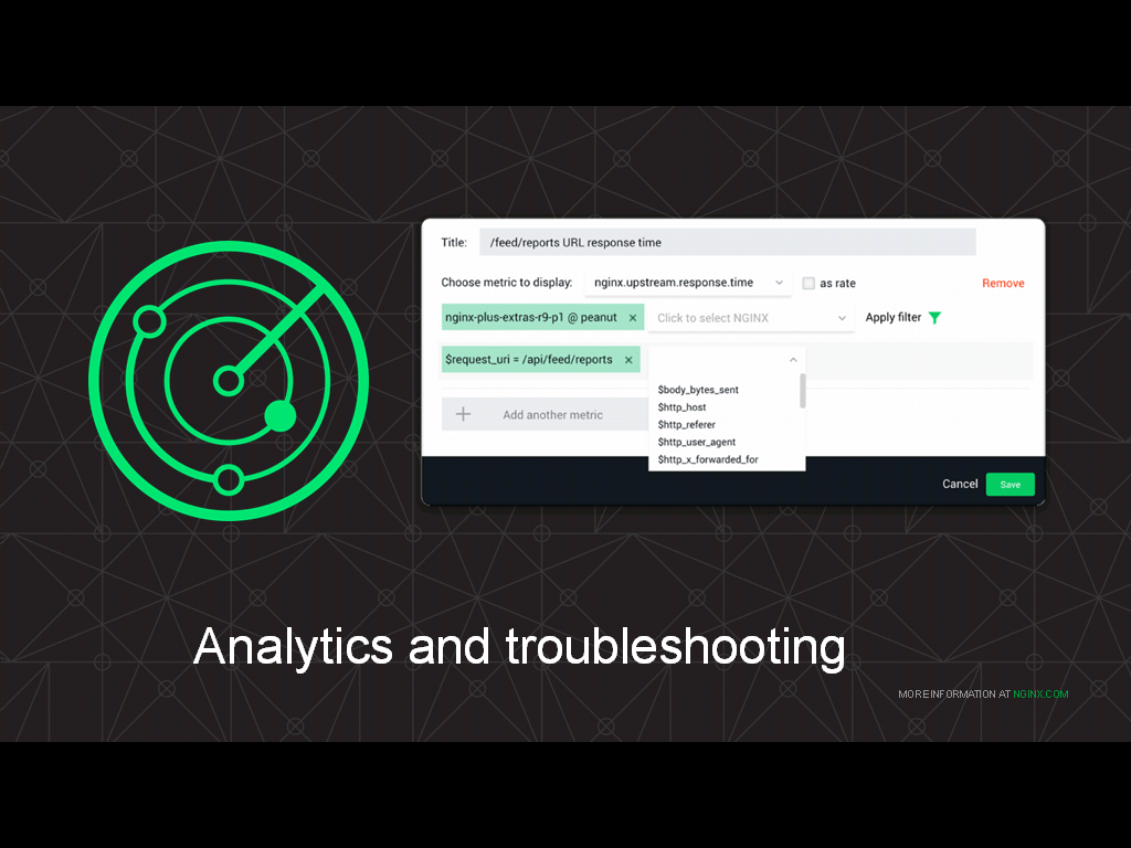 You can build custom graphs in NGINX Amplify by filtering metrics, for example by user agent, client IP address, and data from log files - how to monitor NGINX