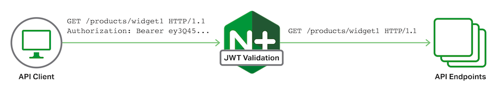 API client and JWT authentication with JWT and NGINX Plus