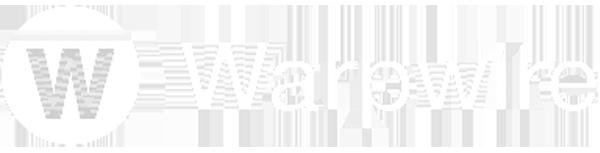 Warpwire