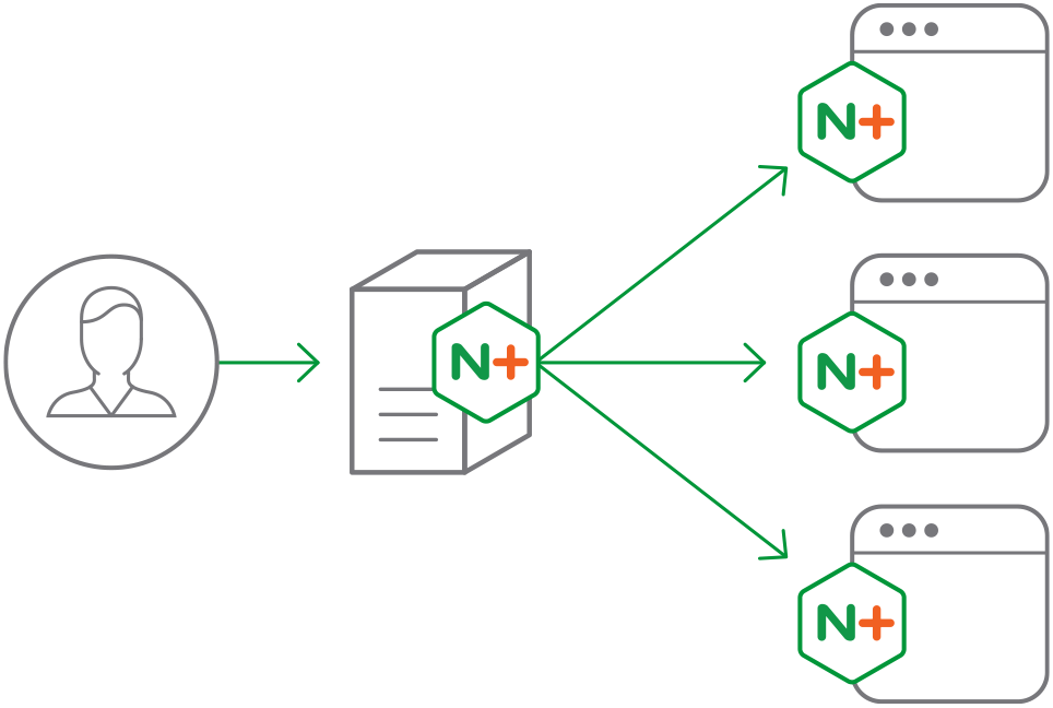nginx plus is a software load balancer  web server  and content cache system