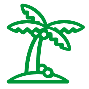 Coconut Palm icon