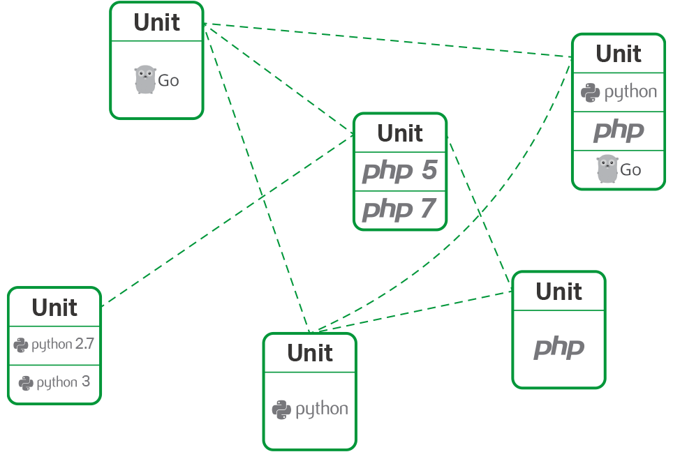 With NGINX Unit you can run multiple languages and versions on the same server