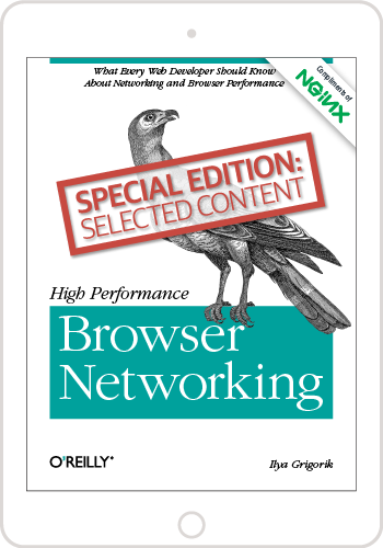 High Performance Browser Networking Ebook
