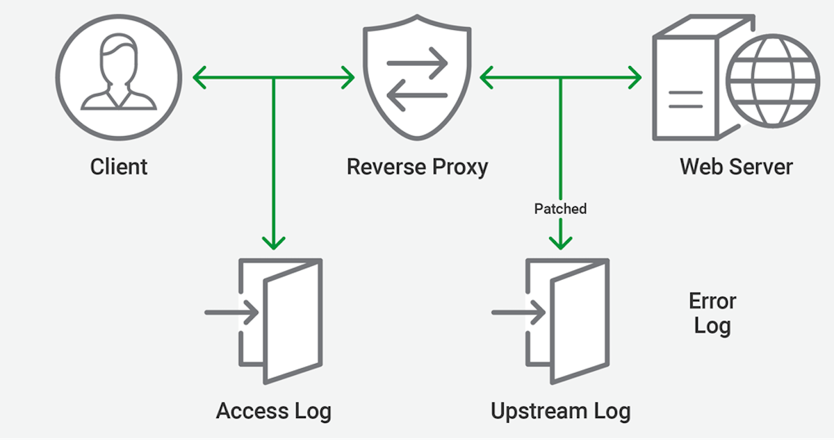Reverse Proxy Github