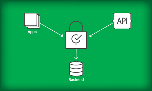 Securing Your API Ecosystem with the NGINX Controller API Management Module
