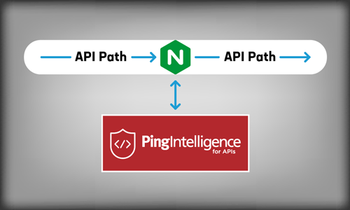 Tapping NGINX for AI-Powered Insight into API Traffic