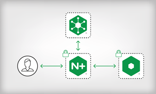 Building and Securely Delivering APIs with the NGINX Application Platform