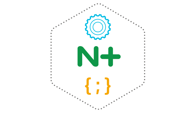 NGINX Programmability
