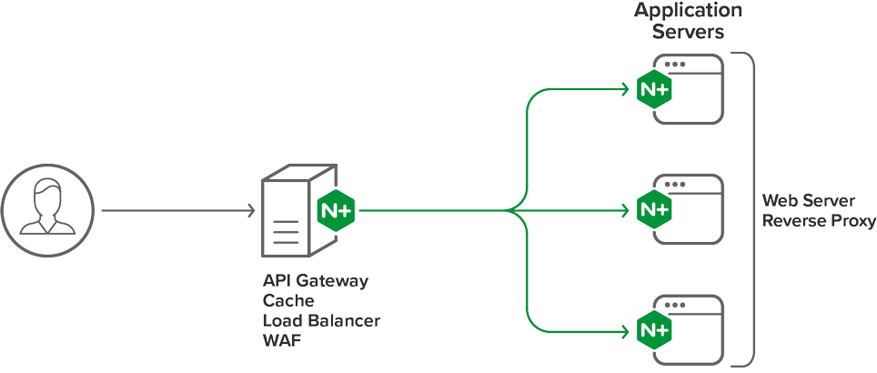 NGINX-Plus-topology_datasheet+product-page