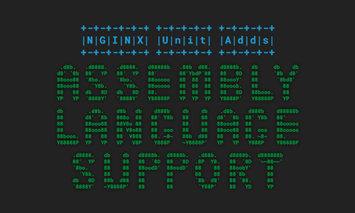 NGINX Unit Adds Assembly Language Support