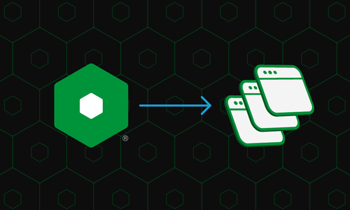 Building Application Stacks With NGINX Unit