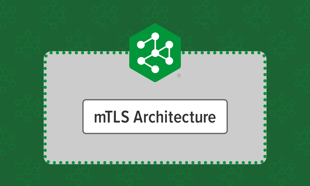 The mTLS Architecture in NGINX Service Mesh
